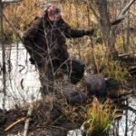 охота на бобра самарская область