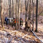 охота на косулю и кабана 2019